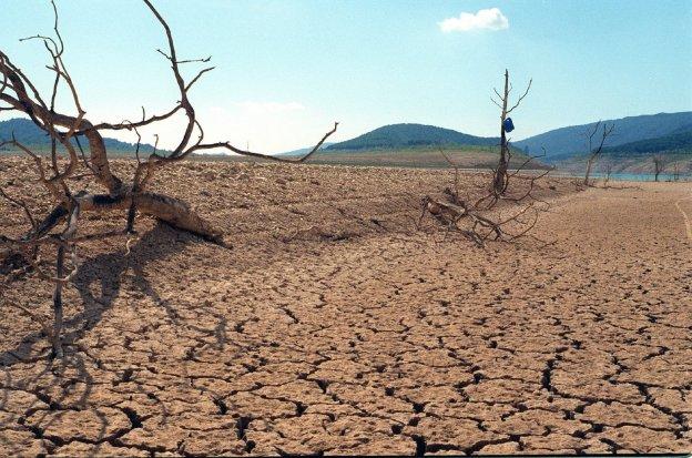 Amigos de la Tierra y Greenpeace proponen una batería de medidas contra la desertificación, que afecta al 75% del suelo