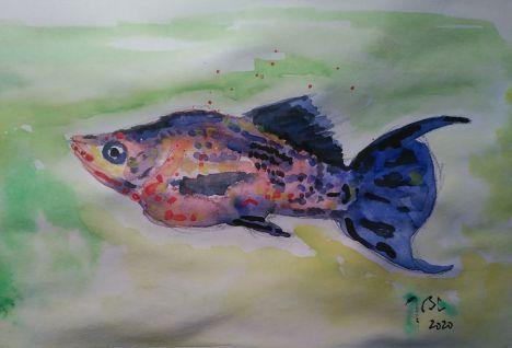 Cada hoja es especial, cada pez es único, cada viviente. Cada persona es 'especie aparte', decía Unamuno, por eso cada muerte es trágica con independencia de su edad y nación.