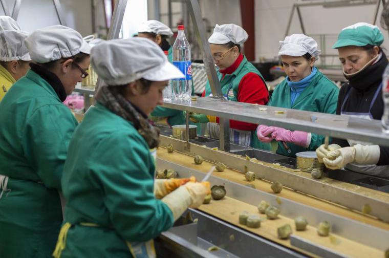 El CSIF pide protección inmediata para las trabajadoras y trabajadores del manipulado de alimentos