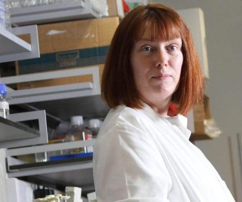 La vacuna contra el coronavirus, ¿para septiembre?