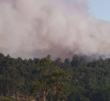Medios aéreos se incorporan a los trabajos de extinción del incendio en Segura de la Sierra