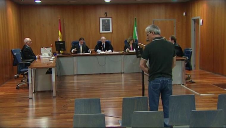 Dos años y un día de cárcel al hombre que intentó secuestrar a un niño en el Carnaval de Málaga de 2016