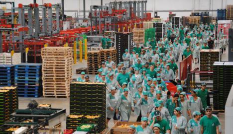 CSIF de Almería solicita a las empresas del manipulado la aplicación del plus de peligrosidad y penosidad a todo el personal de las plantillas