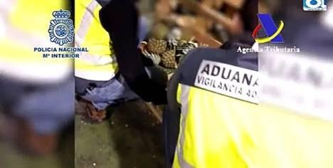 Trece detenidos en una operación antidroga en aguas de Almería