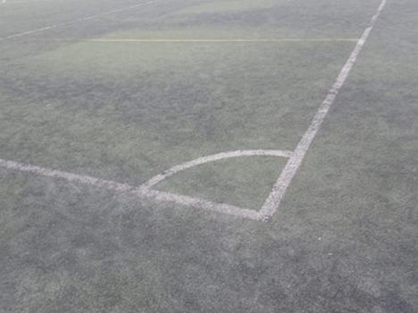 El PSOE de ALBOX exige a Torrecillas construir los vestuarios y cambiar el césped del campo de fútbol y dejar de destruir patrimonio