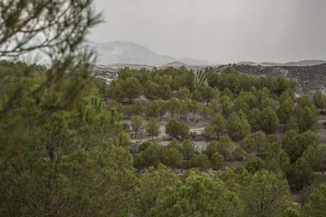 La Asociación para el Desarrollo Rural CAMPODER subvencionará tres proyectos en Puerto Lumbreras en los que se invertirán más de 100.000 euros