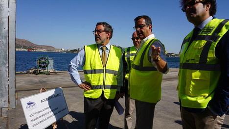 Cartagena se consolida como el principal puerto europeo de exportación de animales vivos, con 270.000 cabezas en 2019