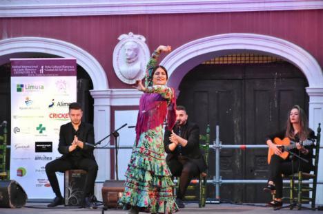 EL INCOLORO: ' El flamenco vence adversidades', por Jerónimo Martínez