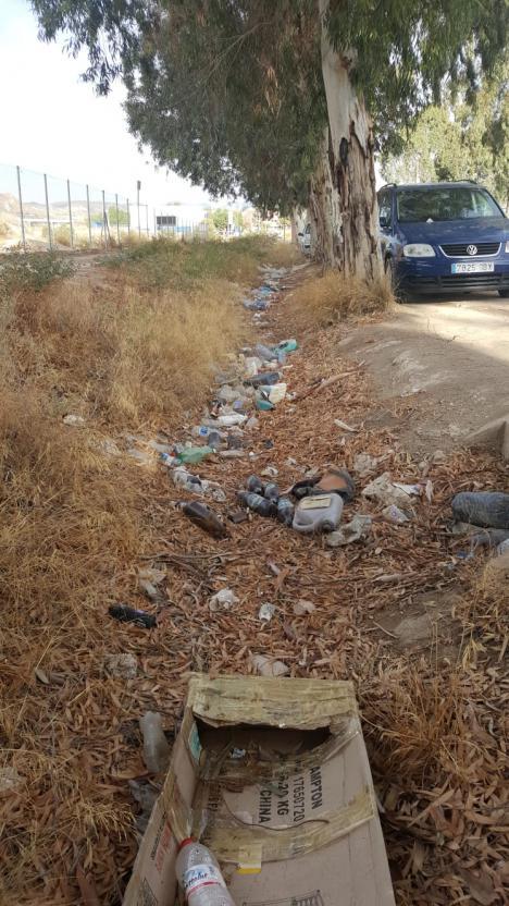 IU reclama el acondicionamiento y limpieza de las vías de entrada a la ciudad