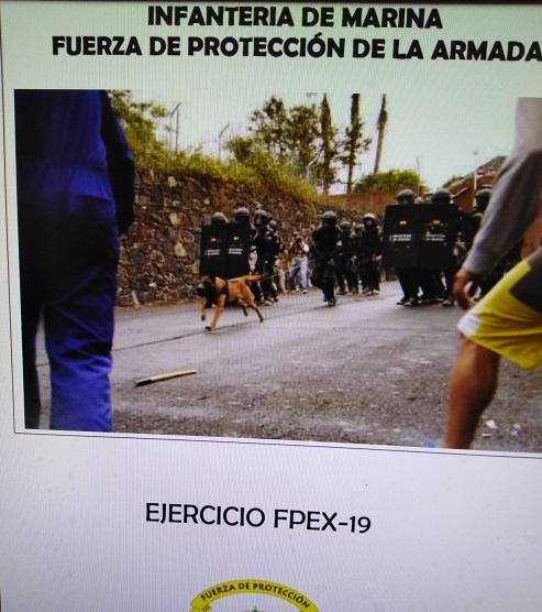 La Fuerza de Protección realiza el ejercicio anual de adiestramiento en Seguridad Física