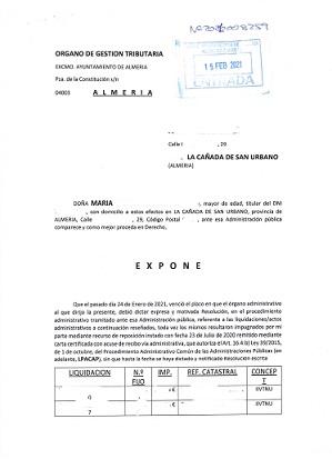 'ASI SIRVE EL AYUNTAMIENTO DE ALMERIA AL INTERES GENERAL Y AL DE SUS CIUDADANOS', por Antonio Carlos Martínez Galvez