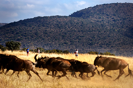 Eastern Cape: maratón en la sabana