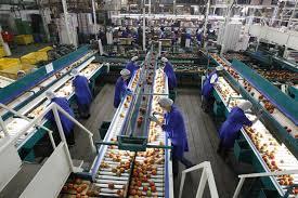 Los trabajos en las alhondigas de Almería rozan la esclavitud, trabajos plagados de humillaciones y silenciados por miedo al despido, con la administración y sindicatos haciendo la vista gorda.