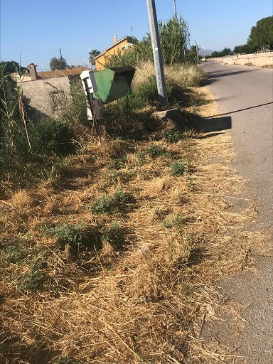 Lorca: El 'abandono' del mantenimiento del municipio provoca inseguridad en caminos, ramblas vertedero y plagas de insectos, ante 'la desidia' del Alcalde del PSOE