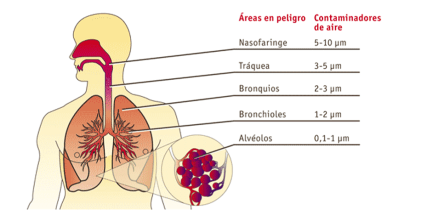 El municipio de Lorca registra un incremento de los niveles de PM10 situándose en el nivel 'Prevención' del protocolo de atención en el marco de estas partículas