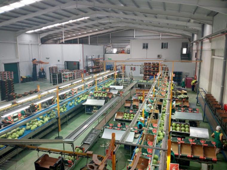 El Partido Popular de Puerto Lumbreras llevará a pleno una moción de apoyo al sector agroalimentario