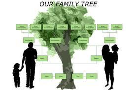 Una herramienta 'online' permite conocer el árbol genealógico de un apellido