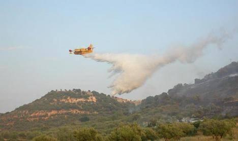 Arden más de mil hectáreas de gran valor ecológico en Yeste