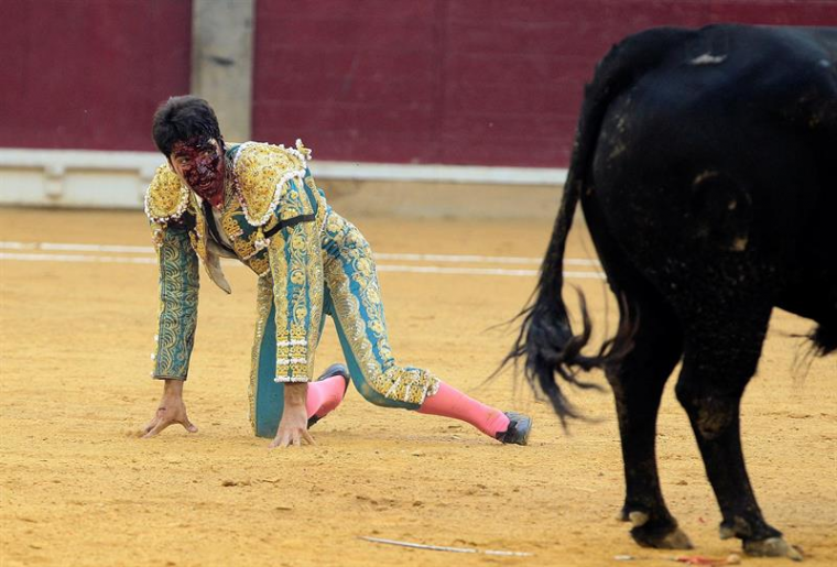 Cayetano Rivera sufre una cornada en Zaragoza y se encuentra en estado grave.
