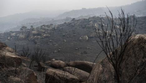 La lluvia rebaja la fuerza de los 27 fuegos activos que hay en Galicia