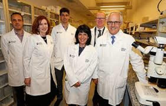 En estudio un fármaco que al parecer mata al coronavirus en 48 horas
