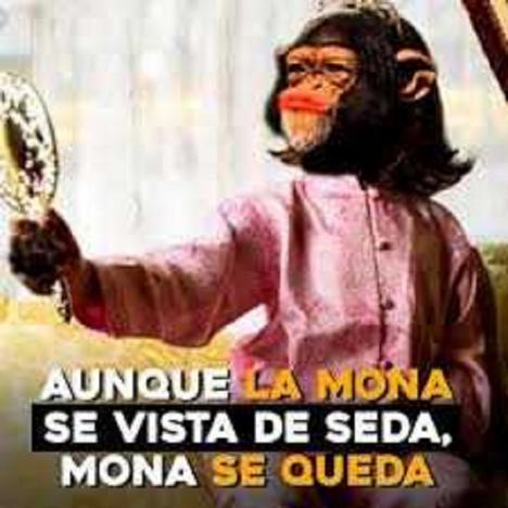 """""""AUNQUE LA MONA SE VISTA DE SEDA, MONA SE QUEDA"""", por Juan Saborido Gago"""