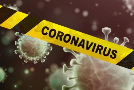Coronavirus en España: 378 en las últimas 24 horas