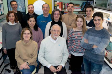 La vacuna intranasal española evitará con una dosis la transmisión del coronavirus