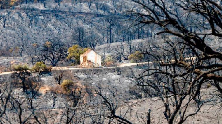 Llueve en Sierra Bermeja donde se han quemado ya más de 7.000 hectáreas