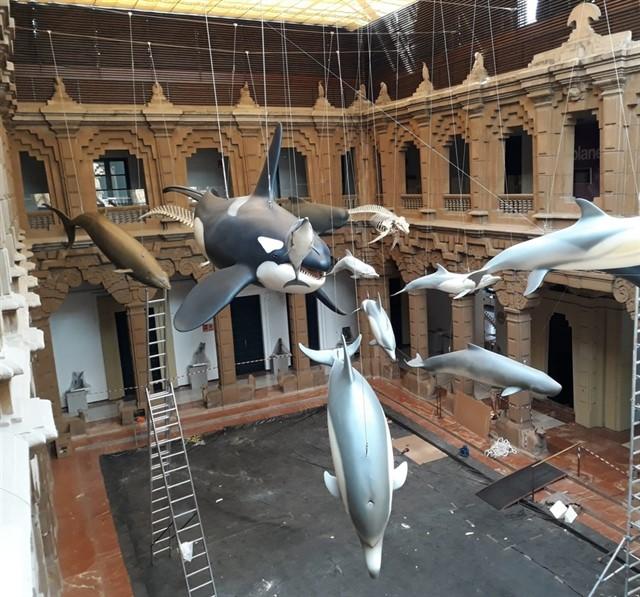 Cetáceos de Andalucía. Exposición permanente en La Casa de la Ciencia de Sevilla