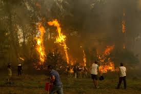 Galicia arde, pero también Asturias y portugal. En Total más de 200 incendios activos.