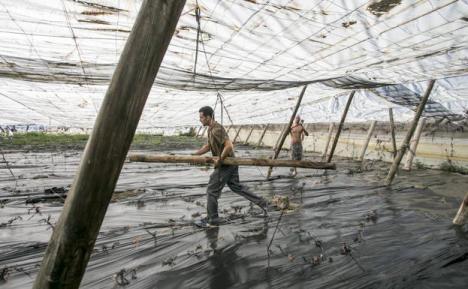 Costas comienza a derribar los invernaderos de La Rábita