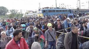 Los tres bomberos sevillanos juzgados en Lesbos por tráfico de inmigrantes han sido absueltos