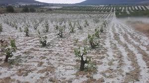 Región de Murcia, tromba de agua y granizo