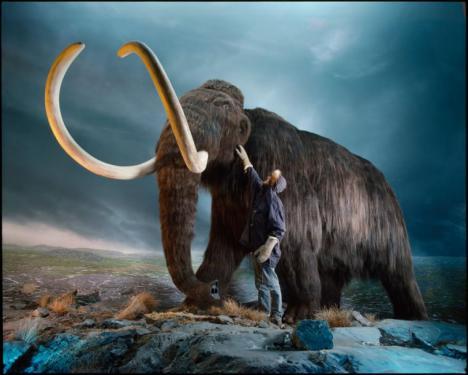 Objetivo: resucitar al mamut lanudo
