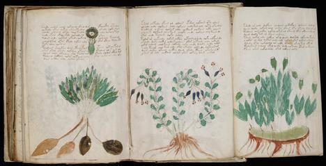 El 'Manuscrito Voynich' puede ser descifrado gracias a la inteligencia artificial