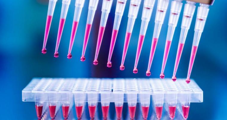 CSIF aplaude que, tal y como solicitó, se hayan realizado más de 200 PCR en Torrecárdenas para detectar profesionales asintomáticos