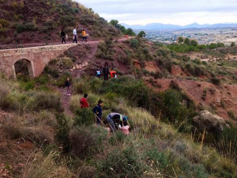 El entorno de Los Pilones acogerá este próximo domingo, 17 de noviembre, una nueva jornada de plantación de árboles