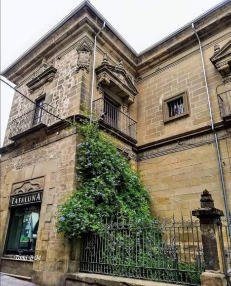 EL PALACIO DE BUSIANOS, a través de la mirada de Tomi Barrionuevo