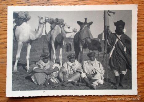 'Creación de las Mias Nómadas', por José Luis de Mesa Gutiérrez, Magistrado(R) y miembro de la Hermandad de Veteranos de Tropas Nómadas del Sahara