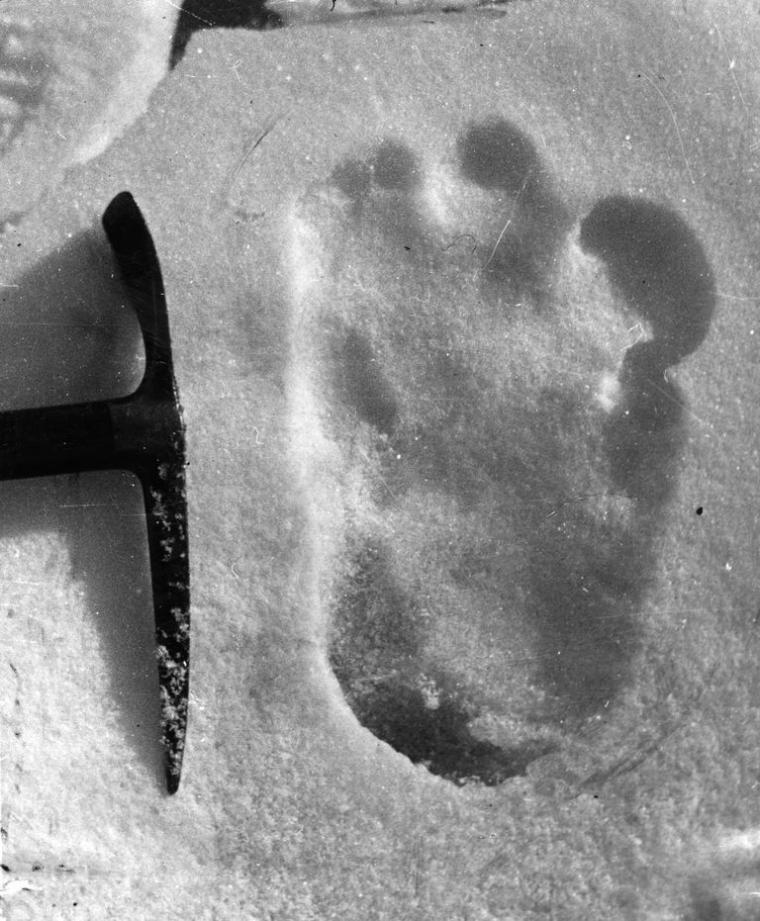 El equipo de Expedición de Montañismo IndianArmy observó misteriosas huellas, que achacó al Yeti.