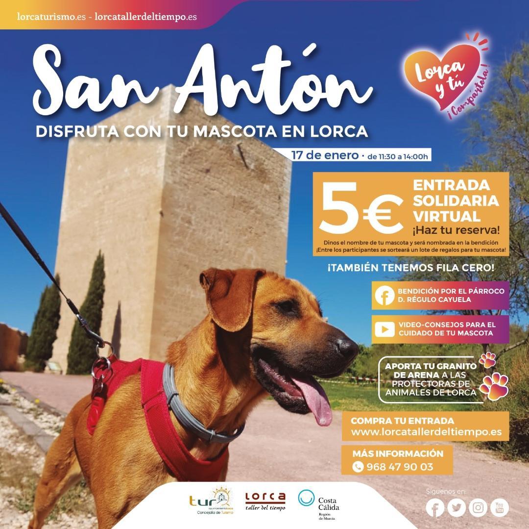 La Concejalía de Turismo de Lorca celebra la festividad de San Antón adaptada a la situación sanitaria actual para que se pueda realizar de forma digital este año