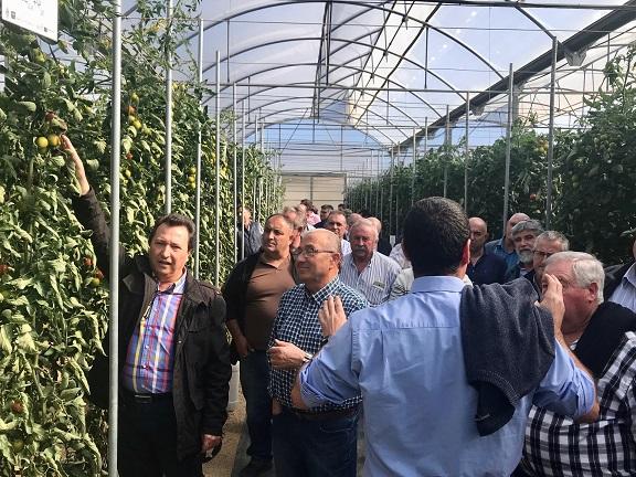 FERAL participa en la Jornada sobre 'Gestión de recursos hídricos en cultivos hortícolas de invernadero' del IFAPA