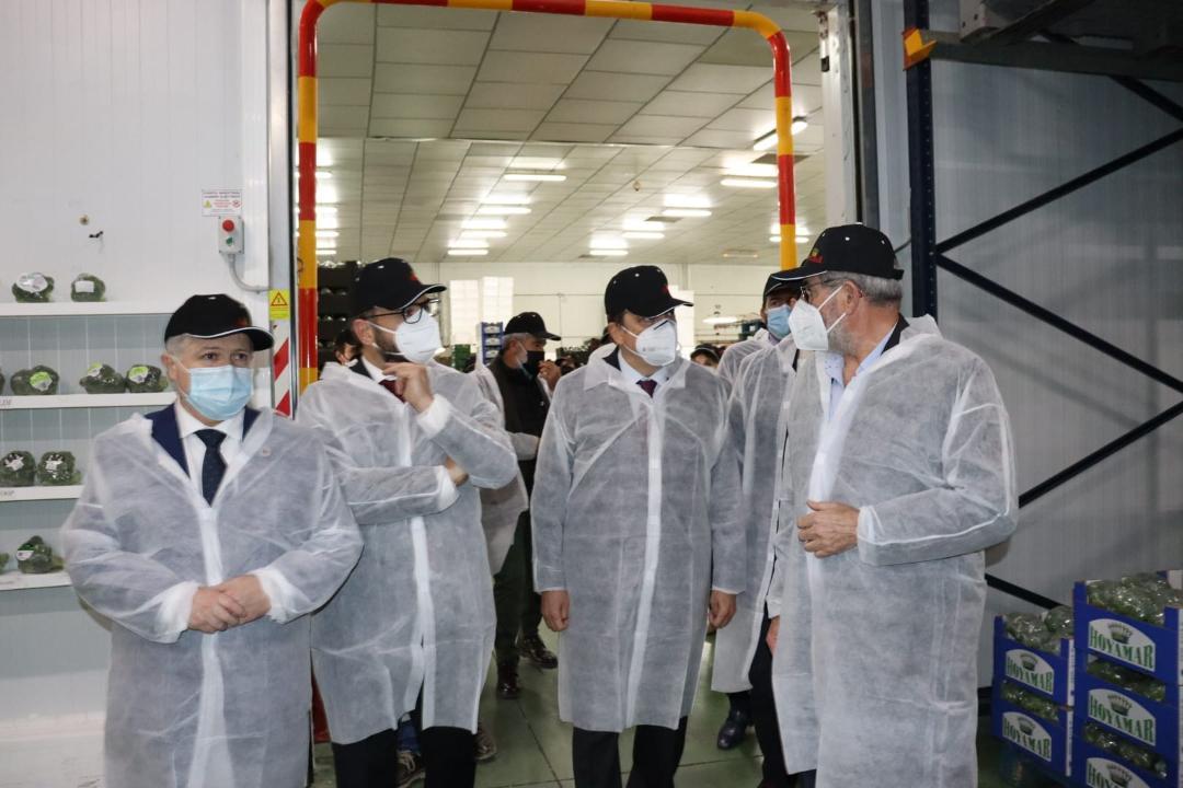 El Acalde de Lorca pone de manifiesto la importancia del sector hortofrutícula del municipio durante la visita del Ministro de Agricultura a la cooperativa agrícola Hoyamar