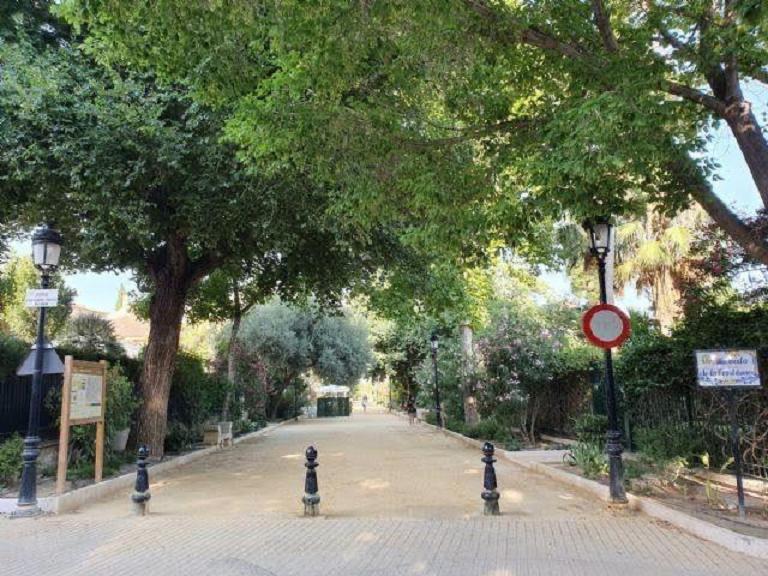 El Ayuntamiento de Lorca inicia los trabajos de preparación de parterres para la plantación de nuevos árboles, arbustos y flores en el municipio