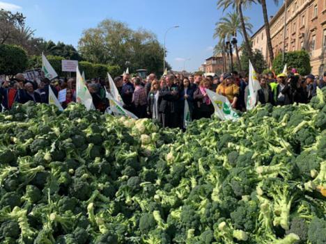 El PSOE pide al Gobierno regional medidas concretas para ayudar a las producciones agrarias de carácter estacional