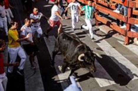 El tercer encierro de San Sebastián de los Reyes, inusualmente largo, deja ocho heridos