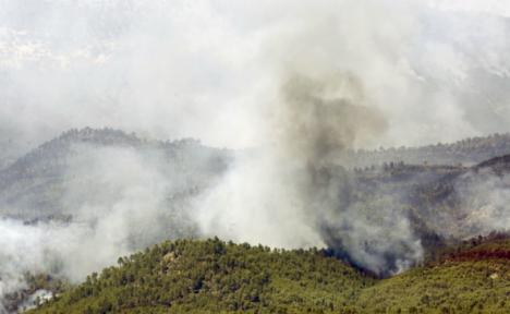 Incendio forestal en Yeste.